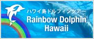 ハワイ島ドルフィンツアー
