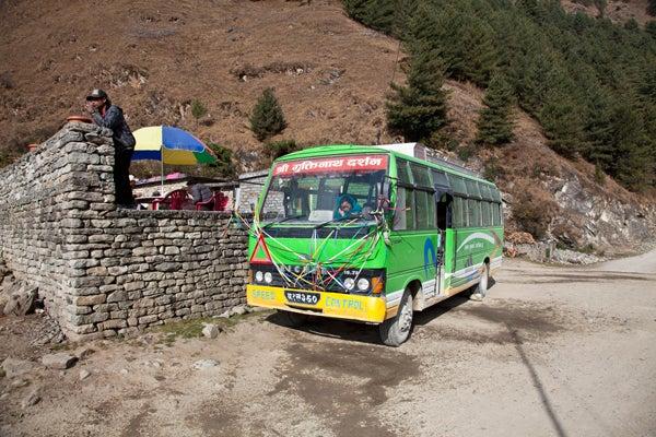 ベンガル猫のひめちゃん-バス