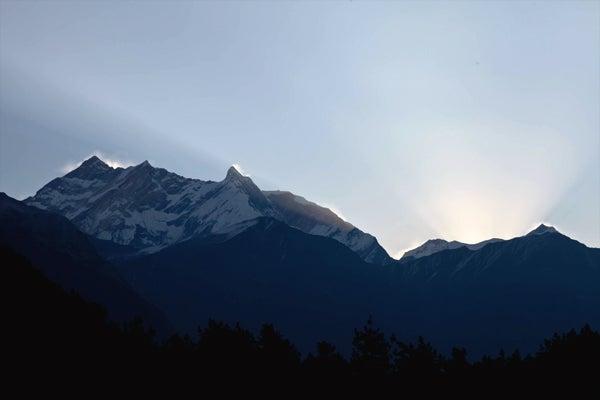 ベンガル猫のひめちゃん-アンナプルナI峰