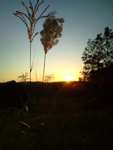 【銀の森に赤い月】-20111016165227.jpg