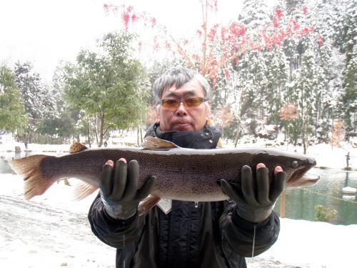 Dr.ミーヤンの下手っぴい釣りブログ-111230 71㎝イトウ