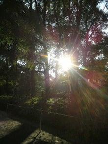 アナウンサーでセラピスト yukie の smily days                   ~周南市アロマのお店 Aroma drops~ -2011123115130000.jpg