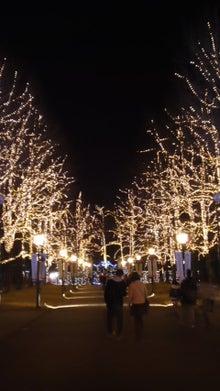 ぞにぃのブログ-111229_2105~01.jpg