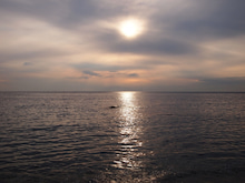 miyuオフィシャルブログ「葉山diary」Powered by Ameba