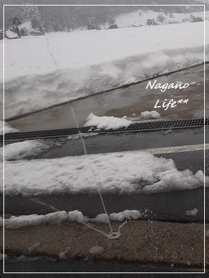 Nagano Life**-スプリンクラー