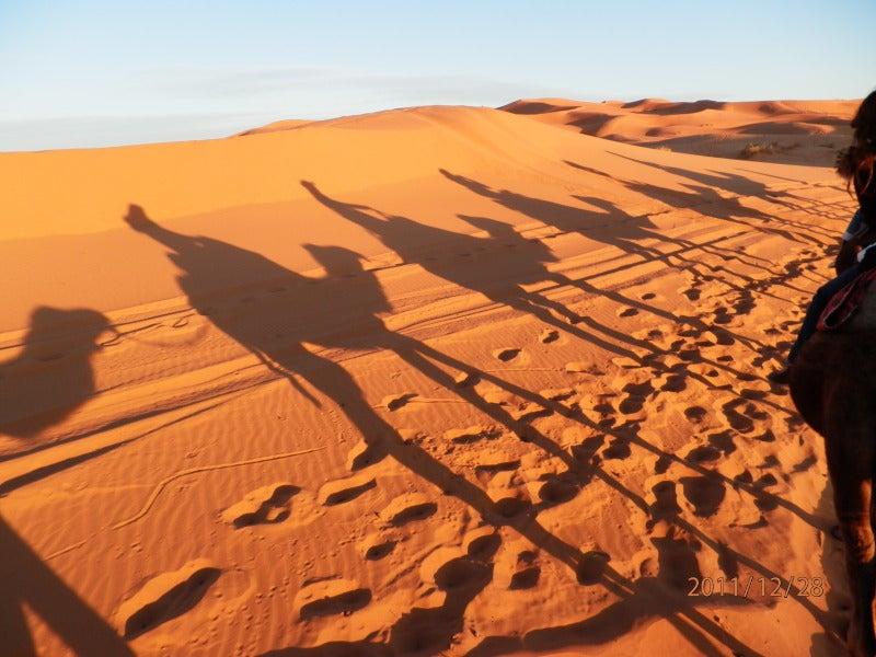 ケセラセラタケチャン-サハラ砂漠