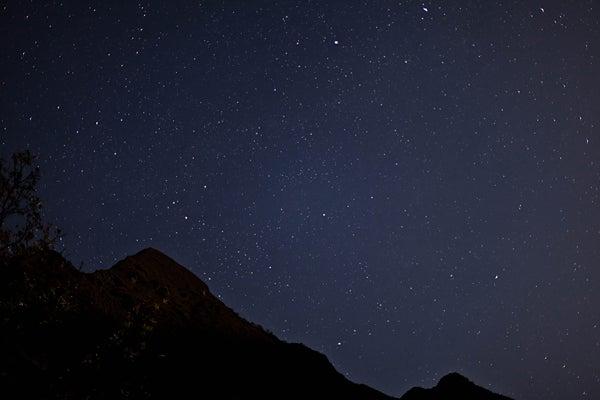 ベンガル猫のひめちゃん-星空