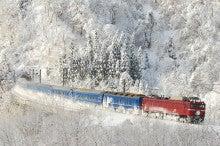 快速碓氷の鉄活動録-EF81-137
