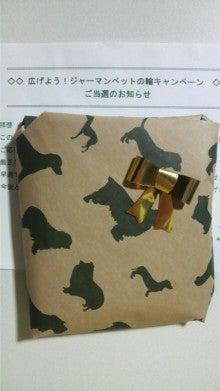 riricoの徒然日記-バッグ1