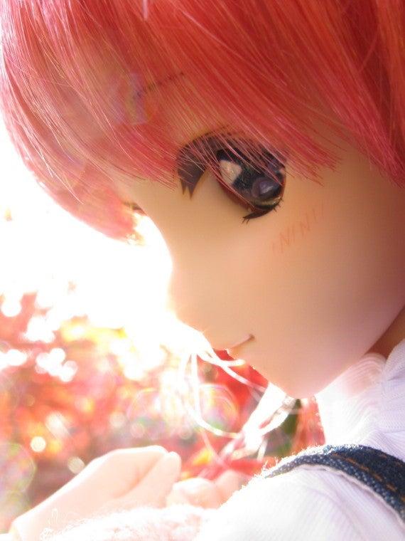 Neo.たいむのドールとホビーの道しるべ-aki11_yuki009