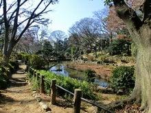 ローフード&マクロビオティックで美味しい生活♪-有栖川宮記念公園4.jpg