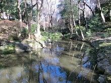ローフード&マクロビオティックで美味しい生活♪-有栖川宮記念公園3.jpg