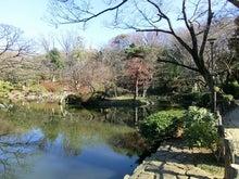ローフード&マクロビオティックで美味しい生活♪-有栖川宮記念公園1.jpg
