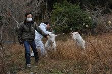 地球防衛軍 動物救援隊 コスモスのブログ