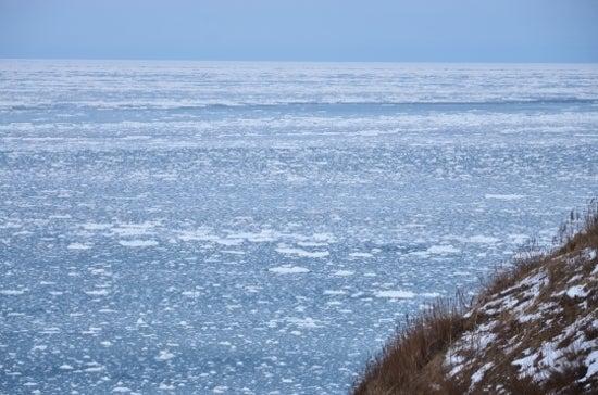 $全てのコスメは美に通ず-流氷