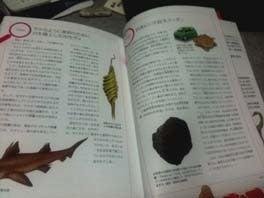 川崎悟司 オフィシャルブログ 古世界の住人 Powered by Ameba-日本の恐竜図鑑・コラムページ