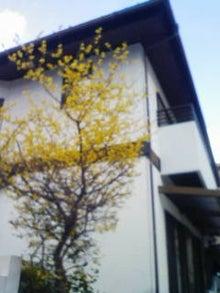 ちよみのブログ-201201251541.jpg