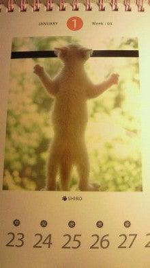 南里侑香オフィシャルブログ「ゆうかcome home★」Powered by Ameba-201201272119000.jpg