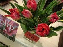 お花屋さんの花かたらい ファレット川西店
