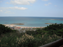 いちごうさぎの☆沖縄☆ブログ