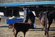 Farm Arcadiaのブログ