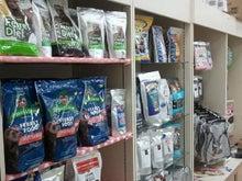 ひろみちゃんと10pooのおきらくブログ-仮店舗1