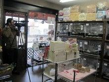 うさぎ専門店パピーファームのブログ