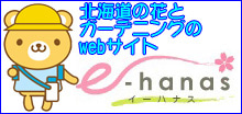 マービー先生とハナスちゃんのちょっと寄り道ブログ-e-hanasバナー