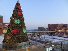 ソウル100% ワンランク上の韓国留学