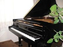 福井・敦賀市ピアノ&リトミック教室 Piano Studio M