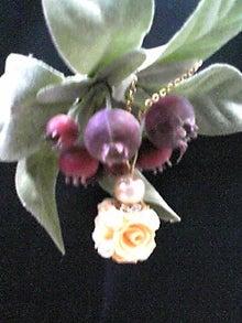 milkusausaさんのブログ-120213_0904~01.JPG