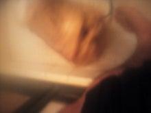 顔が丸くてなにが悪い-NCM_0629.JPG