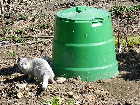 ミラクルカーボン有機肥料で土壌の品質向上を目指す!