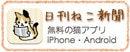 ごまうずら@orange home☆