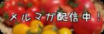 のびんの台所~ノースビレッジ農園 社食日記~