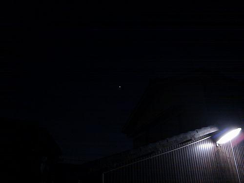 加古川中国飯店 『週刊糯米焼売』 (もち米シュウマイ)-宵の明星