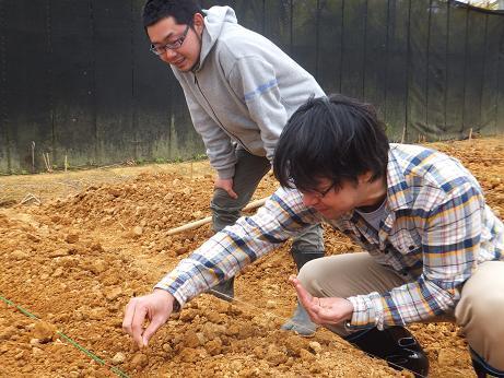 第2期クラインガルテン体験農業1日目 画像