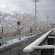 先日の大雪の....