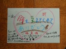 福島原発避難地域に取り残された動物・家畜を救おう!