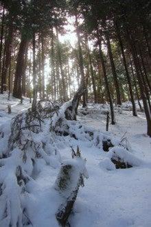 .-0221三峰山(新道ルート