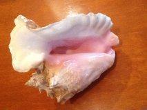 $《カンクンでしか味わえない海鮮和食》