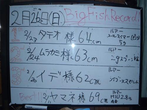 TFA/釣果情報!!