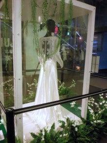 遥香の近況日記-ブレイキング・ドーンウエディングドレス後ろ