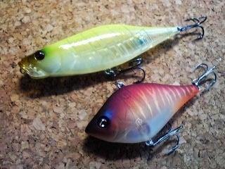 一魚専心-2281