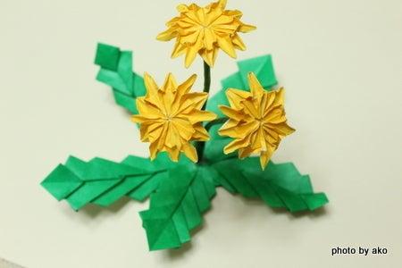 折り紙の 折り紙の花 : ameblo.jp
