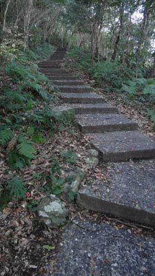 コンクリ階段が続く…