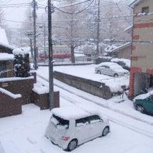 大雪~東京!!