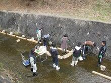 水辺のフィールドミュージアム研究会 ~小さな自然再生の実践~-作業の様子2