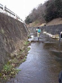 水辺のフィールドミュージアム研究会 ~小さな自然再生の実践~-昨年設置した上向き水制