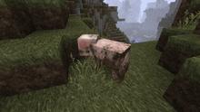 ( ・´ー・`)のブログ-どろんこな豚さん
